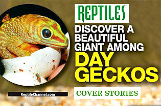 REPTILES MAGAZINE Cover Story
