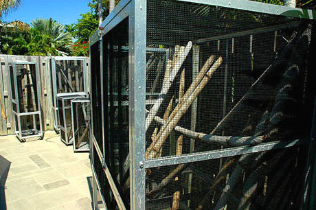 Large reptile screen cages